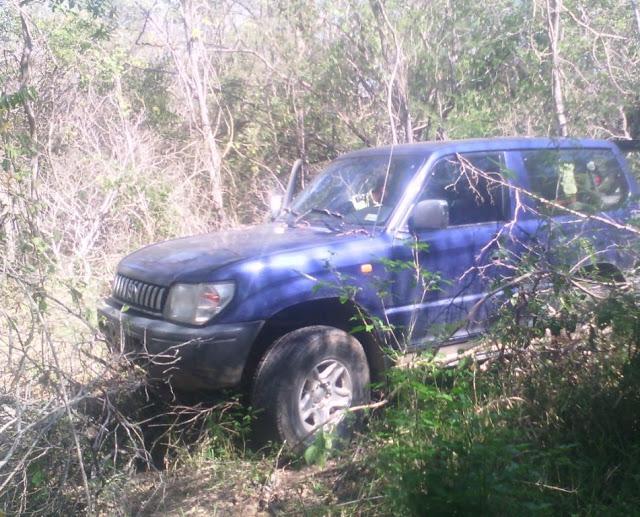 Iapatmi localizó camioneta robada en zona boscosa.