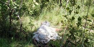 Mujer fue encontrada asesinada en zona boscosa de El Socorro