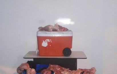 GNB confiscó 90 kilos de carne en Guayabal