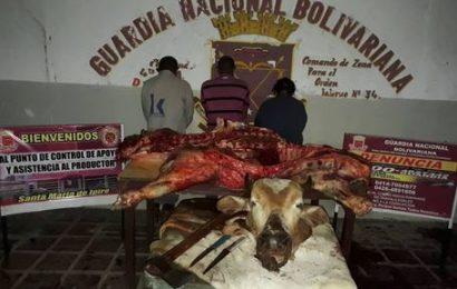 Detenidas personas por parte de la GNB que robaron ganado