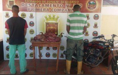 Guardia Nacional Bolivariana incautó 87 kilos de carne