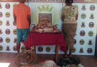 Guardia Nacional Bolivariana detuvo a personas que robaban ganado